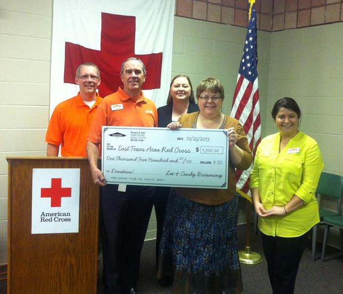 2013 Red Cross Check Presentation