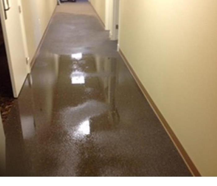 Wet Carpet In Hallway