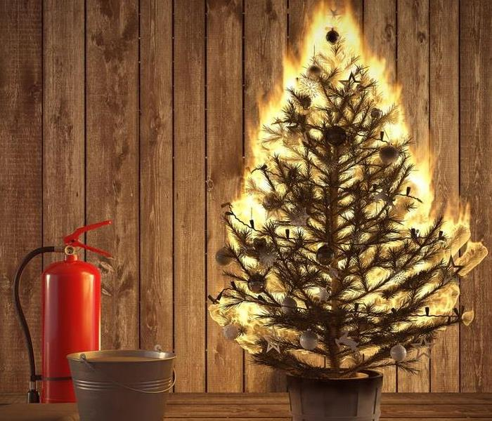 green Christmas tree in room consumed with flames. Red fire extinguisher sitting beside Christmas Tree