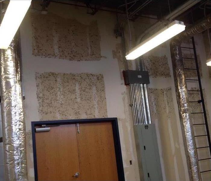 Commercial Preventative Steps for Mold Growth
