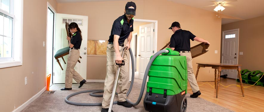 Palestine, TX cleaning services